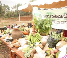women-farmers-exhibition