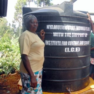 kitchen-gardens-providing-food-security-and-income